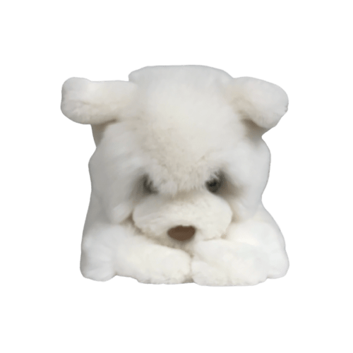 Peluche_Chat_Blanc_Sacha_S__face_caresse_orylag