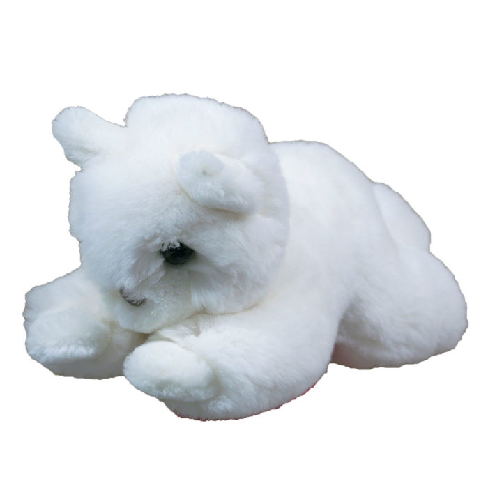 peluche chat blanc S caresse orylag 3