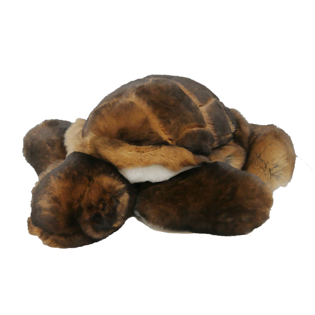 peluche tortue marron caresse orylag 1